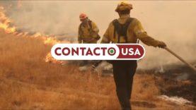Incêndios na California já mataram 25 pessoas